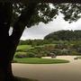 足立美術館の日本庭園、絵画のように美しいです。