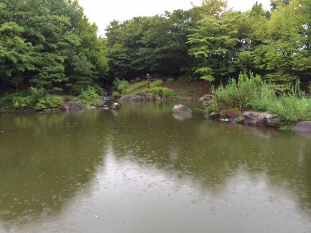 20150830猿江 雨__ 3.JPG