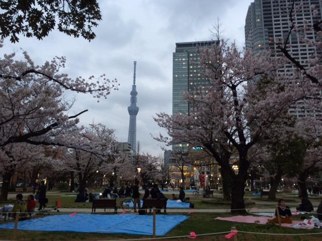 20160401錦糸公園IMG_5917.JPG