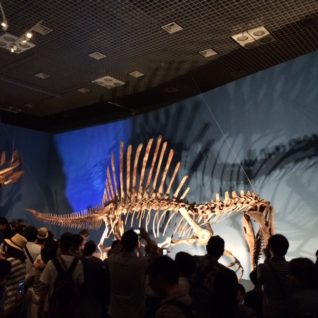 20160521恐竜博IMG_6020.JPG