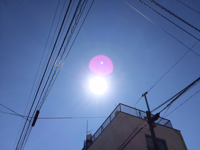 20160817お盆明けIMG_6444.JPG