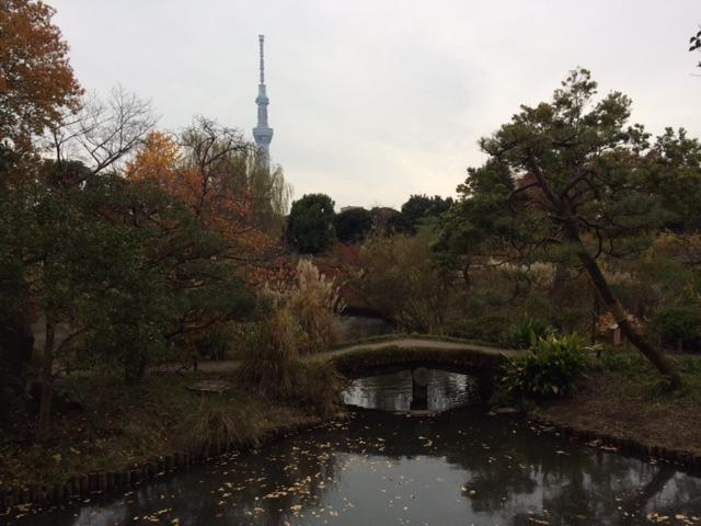 20161127百花園IMG_6881.JPG