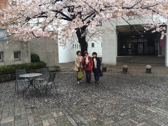 20170408市川の桜IMG_7320.JPG